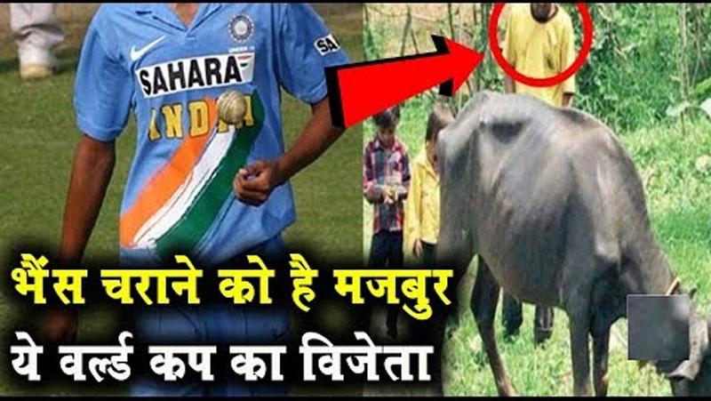 विश्वकप में भारत की जीत का ये हीरो आज भैंस चराने को है मजबूर, इतनी बुरी हो गई है हालत..जानिए