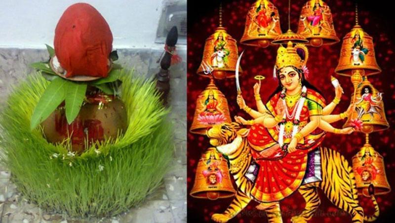 आखिर नवरात्रि में क्यों बोए जाते हैं जौं, इनके रंगों से जाने शुभ-अशुभ संकेत
