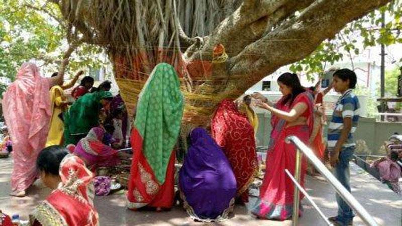 भारतीय शास्त्रों की गौरव गरिमा का प्रतीक है वट सावित्री व्रत, ऐसे पूजा करने से होते है लाभ...