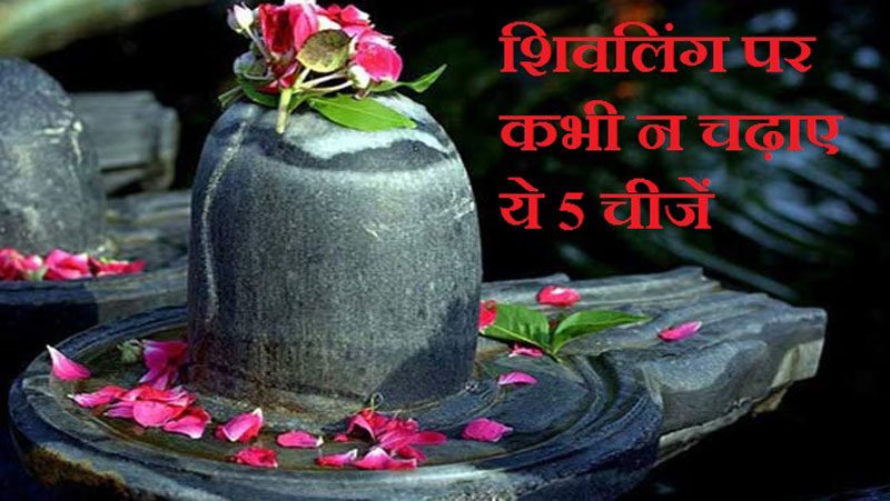 शिवलिंग पर इन 5 चीजों को भूलकर भी ना करें अर्पित, ऐसा करने से भगवान शिव के क्रोध...