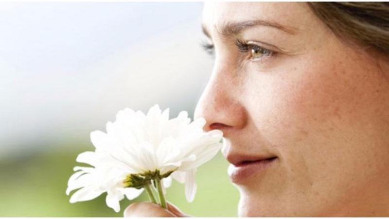 नई रिसर्च में खुलासा, गंध सूंघने में नाक ही नहीं ये अंग भी आता है काम, वैज्ञानिकों ने..