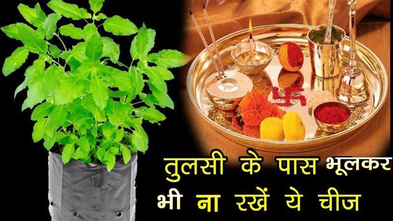 तुलसी के पौधे के पास भूलकर भी ना रखें ये 5 चीजें, घर में आर्थिक तंगी के साथ आएगी दरिद्रता..