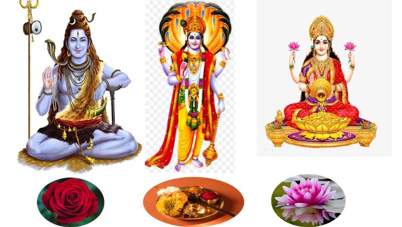 पूजा के दौरान भगवान को फूल चढ़ाने से पड़ता है ये प्रभाव, हर रंग के फूल का होता है ख़ास महत्त्व...जानिये