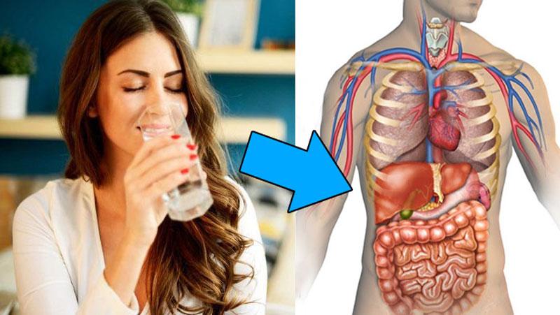 सुबह उठते ही पानी पीने से मिलते है शरीर को अद्भुत फायदे, दूर हो जाते है ये रोग...जानिए